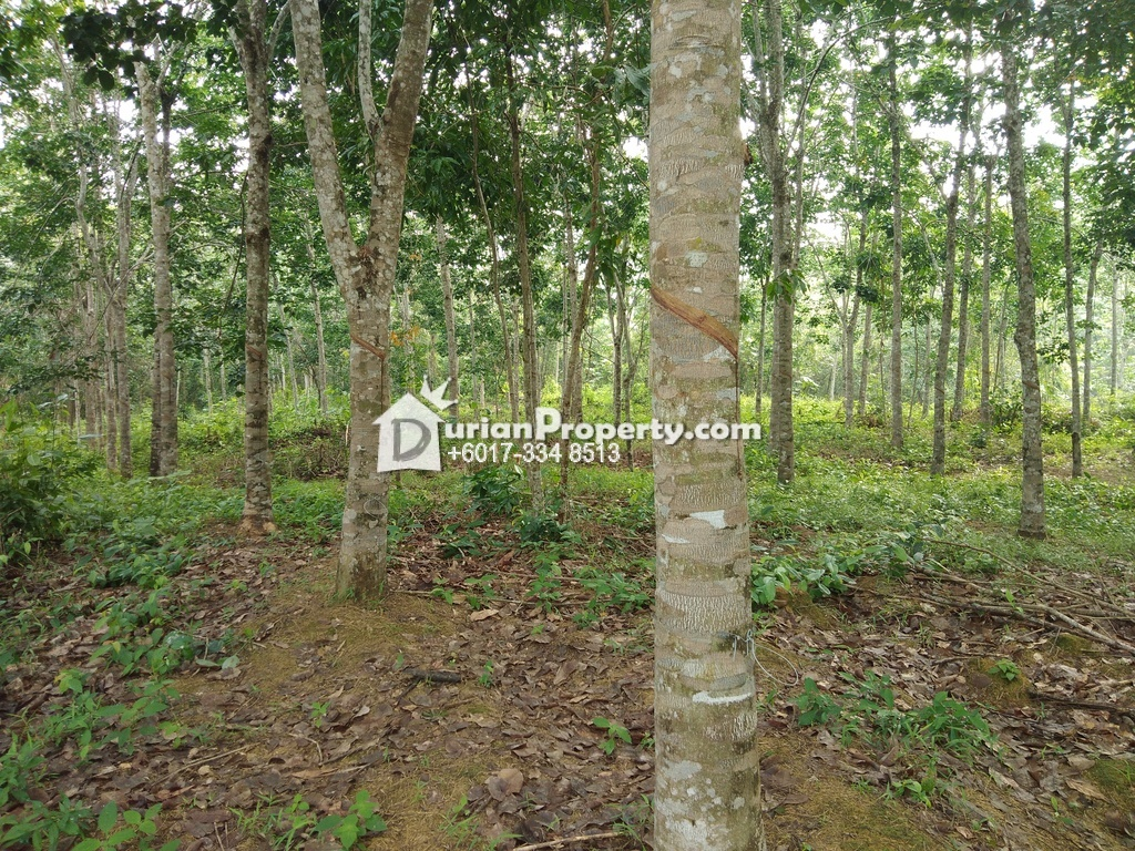 Agriculture Land For Sale at Rembau, Negeri Sembilan
