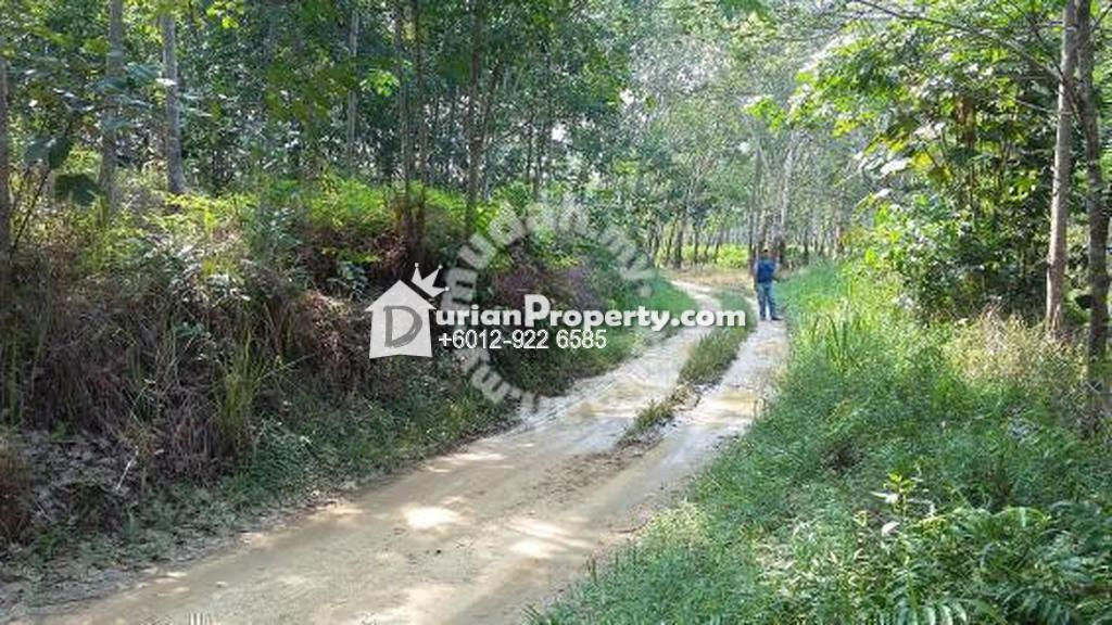 Agriculture Land For Sale at Slim River, Perak