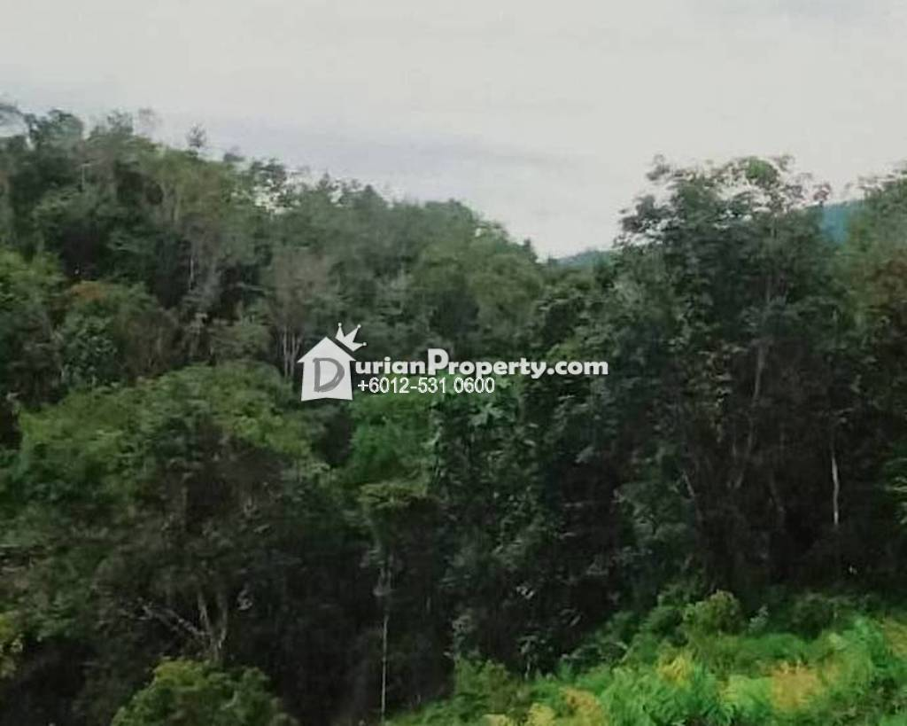 Agriculture Land For Auction at Raub, Pahang