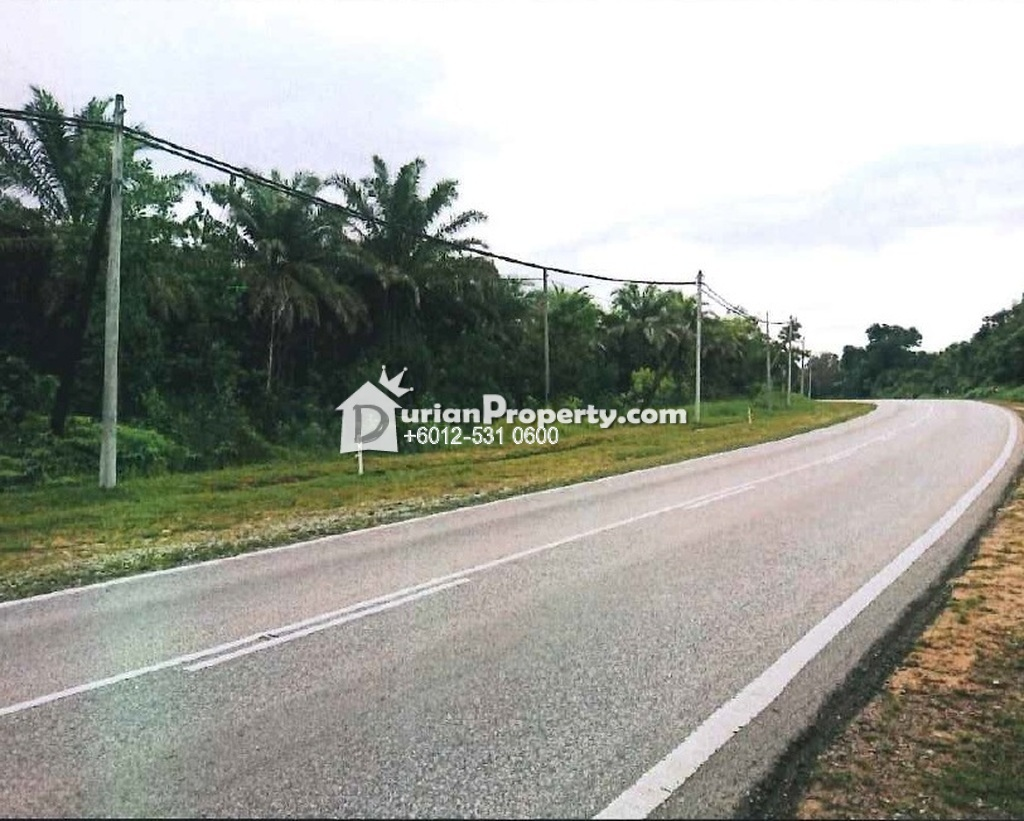 Agriculture Land For Auction at Kuantan, Pahang