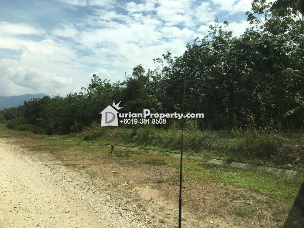 Agriculture Land For Sale at Karak, Pahang