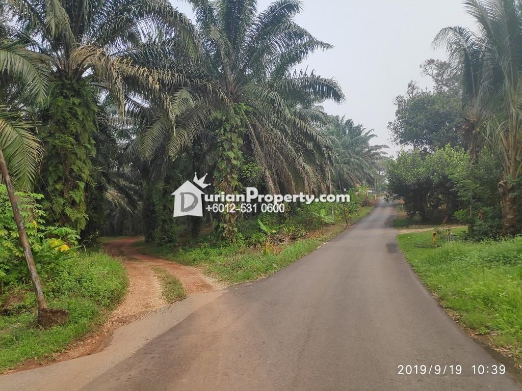 Agriculture Land For Sale at Slim River, Perak