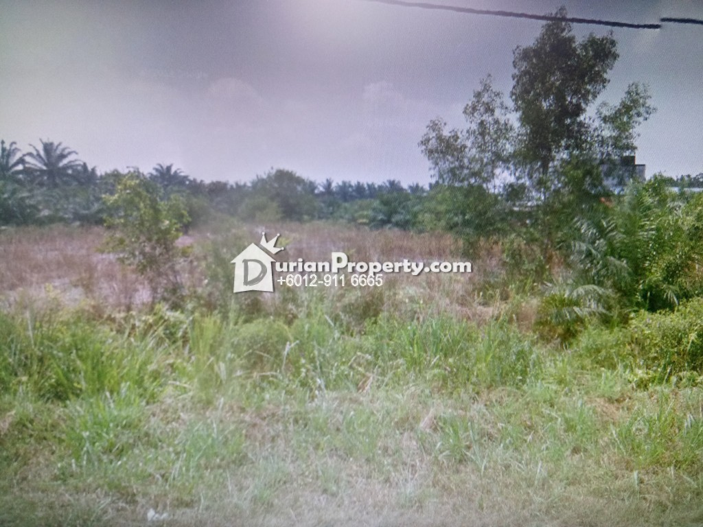 Agriculture Land For Rent at Jenjarom, Selangor