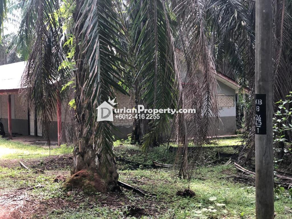 Agriculture Land For Sale at Kuala Ketil, Kedah
