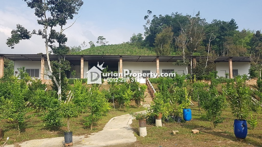 Agriculture Land For Sale at Raub, Pahang