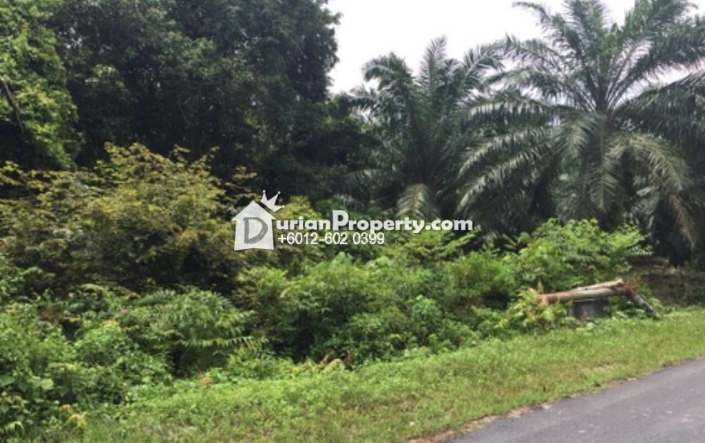 Industrial Land For Sale at Jenjarom, Selangor