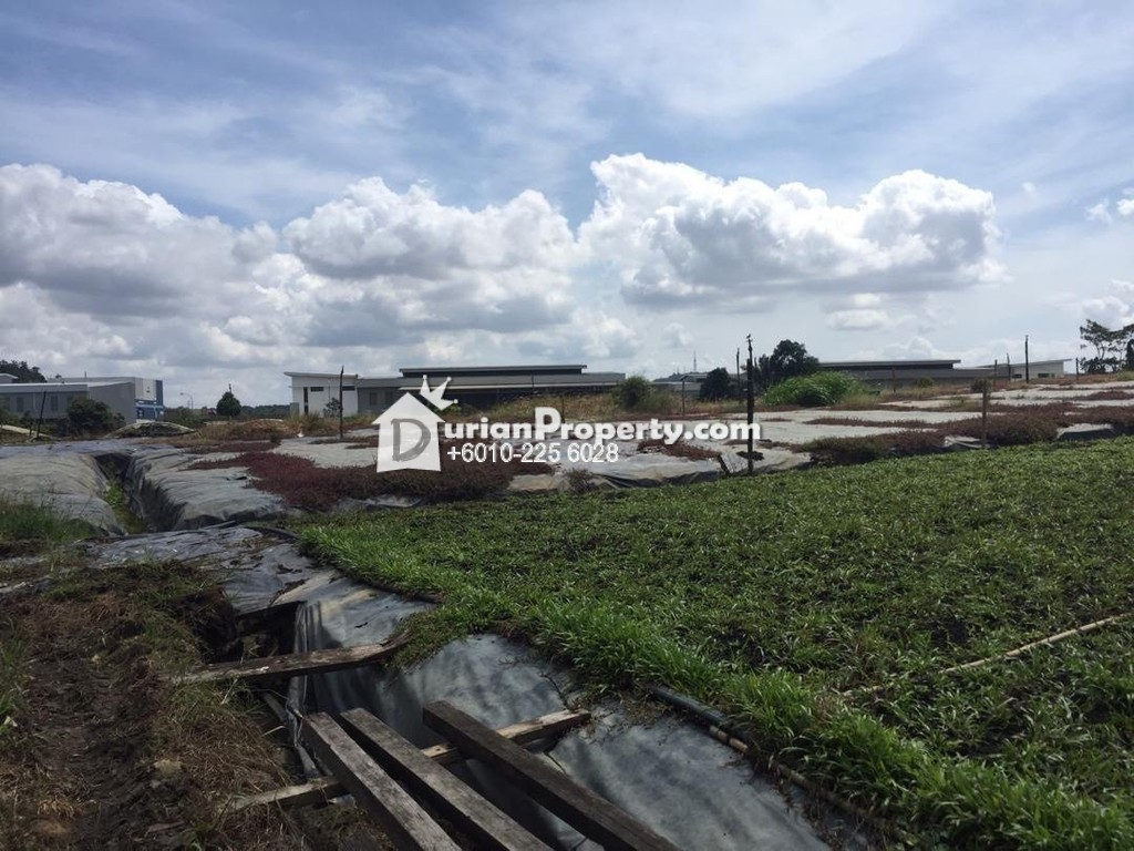 Agriculture Land For Sale at Pekan Nanas, Johor