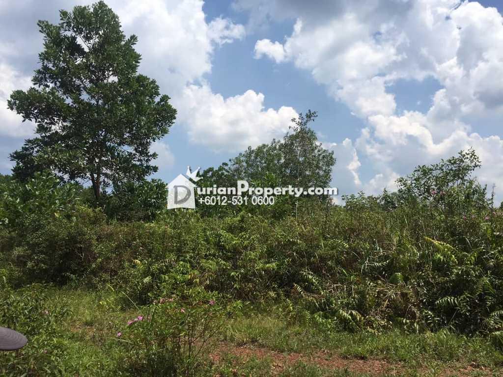 Agriculture Land For Sale at Pengerang, Johor
