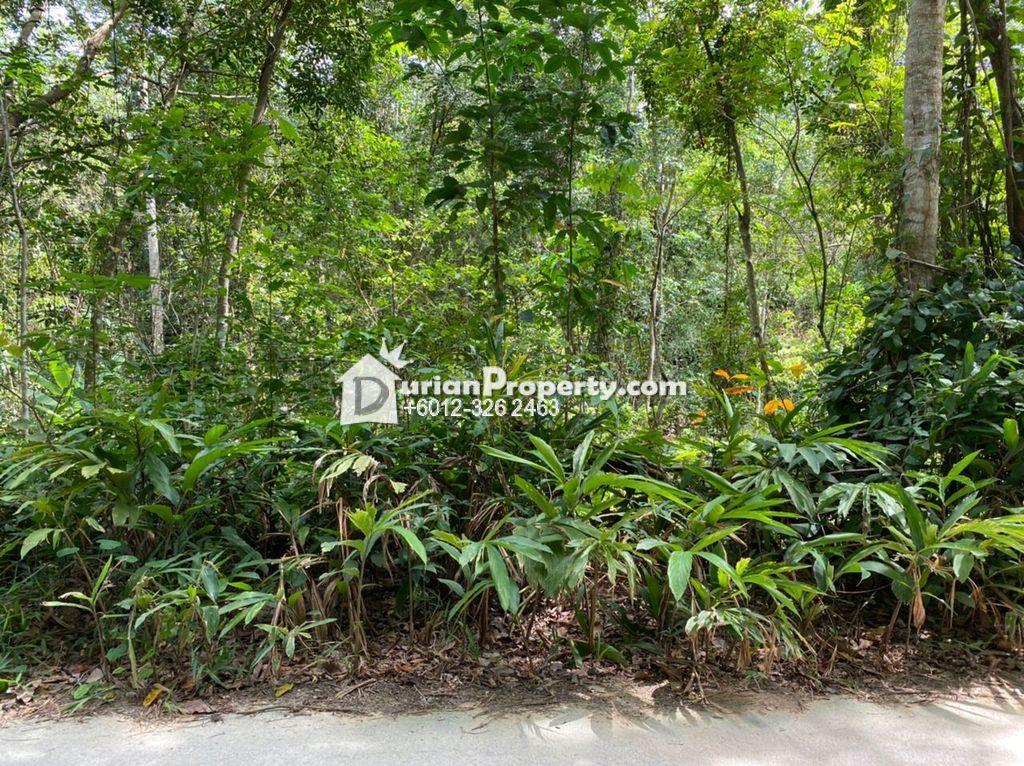 Agriculture Land For Sale at Lenggeng, Negeri Sembilan