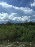 Agriculture Land For Sale at Negeri Sembilan, Malaysia