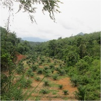 Property for Auction at Baling