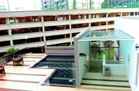 Property for Rent at Platino