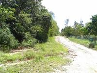 Property for Sale at Taman Sekamat