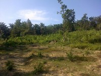 Property for Sale at Kuantan