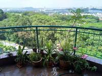 Property for Sale at Venice Hill
