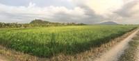 Property for Sale at Permatang Pauh
