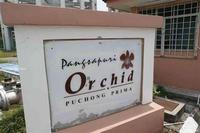 Property for Sale at Pangsapuri Orchid