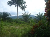 Residential Land For Sale at Semenyih, Selangor