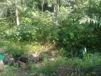 Property for Sale at Temangan