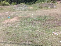 Property for Sale at Pahang