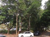 Property for Sale at Kota Damansara
