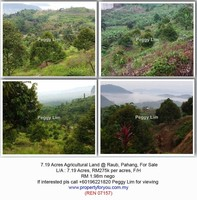 Property for Sale at Raub