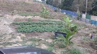 Agriculture Land For Auction at Hulu Langat, Selangor