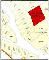 Property for Sale at Janda Baik