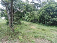 Residential Land For Sale at Bukit Beruntung, Rawang