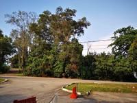 Property for Sale at Kampung Bagan Pinang