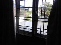 Semi D For Rent at Bandar Perdana, Sungai Petani