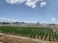 Agriculture Land For Rent at Semenyih, Selangor