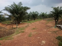 Property for Sale at Gurun