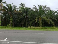 Property for Sale at Merlimau