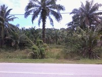 Property for Sale at Telok Panglima Garang