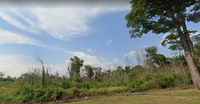 Property for Sale at Putra Nilai