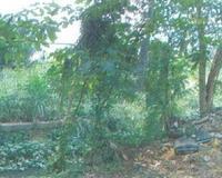 Property for Auction at Kapar